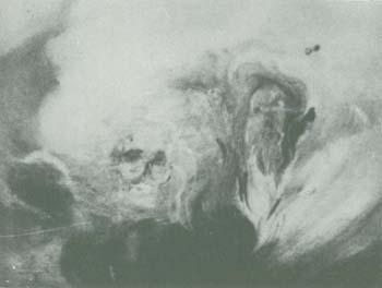 Escorpio según Reynaud de la Ferrière