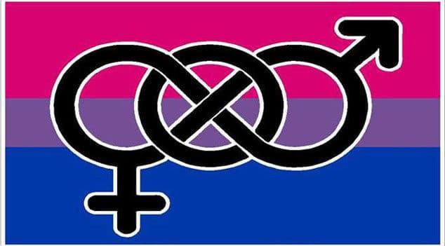 Bandera de la Bisexualidad